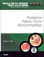 Posterior Pelvic Floor Abnormalities (Female Pelvic Video Surgery Atlas Series)