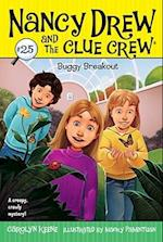 Buggy Breakout (Nancy Drew and the Clue Crew)
