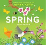 Spring: A Pop-up Book (Seasons Pop up)
