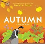 Autumn (Seasons Pop up)