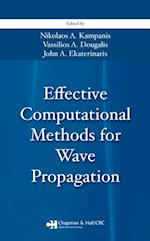 Effective Computational Methods for Wave Propagation (NUMERICAL INSIGHTS)