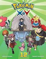 Pokemon X-Y 12 (Pokemon Xy)
