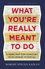 What You're Really Meant to Do af Robert S. Kaplan
