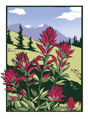 Bog, hardback Indian Paintbrush (Boxed) af Bruce Smith
