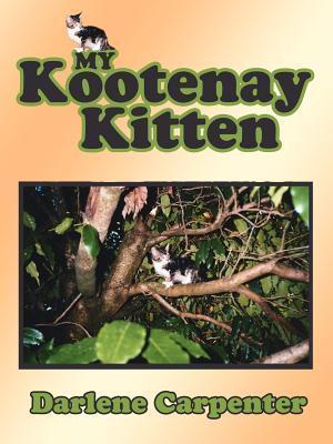 My Kootenay Kitten