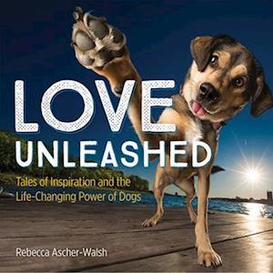 Bog, hardback Love Unleashed af Rebecca Ascher-walsh