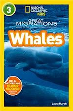 National Geographic Kids Readers: Whales (National Geographic Kids Readers Level 3)