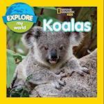 Koalas (Explore My World)