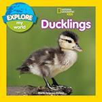 Ducklings (Explore My World)