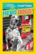 National Geographic Kids Chapters: Hero Dogs (Ngk Chapters)