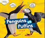 Penguins vs. Puffins (Animals)