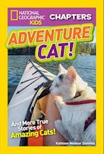 Adventure Cat! (National Geographic Kids Chapters)