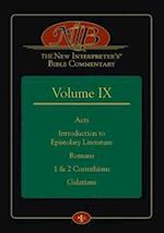 The New Interpreter's Bible Commentary (nr. 9)