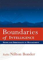 Boundaries of Intelligence