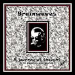 Brainwaves: A Journey of Thought in doodles and words af Collette