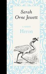 A White Heron