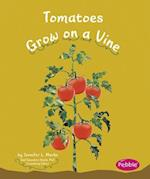 Tomatoes Grow on a Vine af Mari C. Schuh