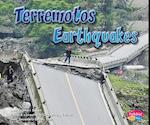 Terremotos/Earthquakes af Mari C. Schuh