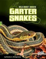 Garter Snakes (Edge Books)
