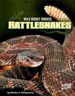 Rattlesnakes (Edge Books)