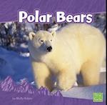 Polar Bears (First Facts)