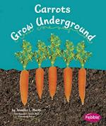 Carrots Grow Underground (Pebble Books: How Fruits and Vegetables Grow)