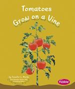 Tomatoes Grow on a Vine af Gail Saunders Smith, Mari Schuh