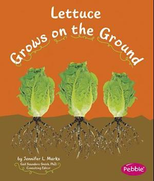 Bog, paperback Lettuce Grows on the Ground af Mari C. Schuh
