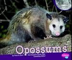 Opossums af Mary R. Dunn