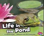 Life in a Pond (Habitats Around the World)