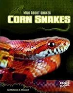 Corn Snakes (Edge Books)