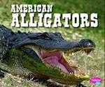 American Alligators (Pebble Plus)