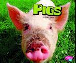 Pigs (Pebble Plus)