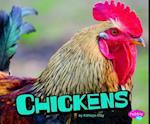 Chickens (Pebble Plus)