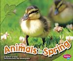 Animals in Spring af Martha E. H. Rustad