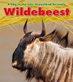 Wildebeest af Louise Spilsbury