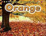 Orange (Colors All Around Us)