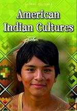 American Indian Cultures (RAINTREE PERSPECTIVES)