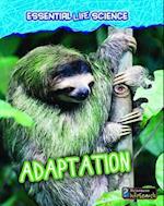 Adaptation (Heinemann Infosearch)