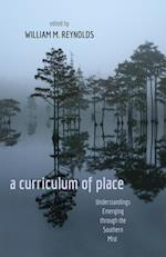 A Curriculum of Place (Counterpoints: Studies in the Postmodern Theory of Education)
