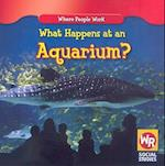 What Happens at an Aquarium? (Where People Work)