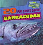 20 Fun Facts about Barracudas