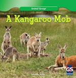 A Kangaroo Mob (Animal Groups)