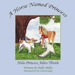 A Horse Named Princess af Holly Miller, Jere Schwartzkopf