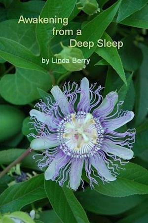 Bog, hæftet Awakening From A Deep Sleep af Linda Berry