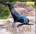 Meet the Sea Lion af Susanna Keller
