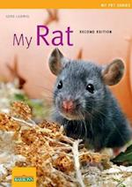 My Rat