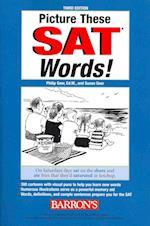 Picture These SAT Words! (Picture These Sat Words!)