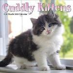 Cuddly Kittens 2018 Calendar