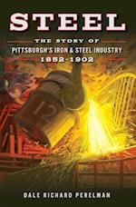 Steel af Dale Richard Perelman